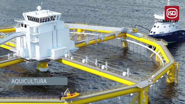 Indústria do Mar   Dia Nacional do Mar