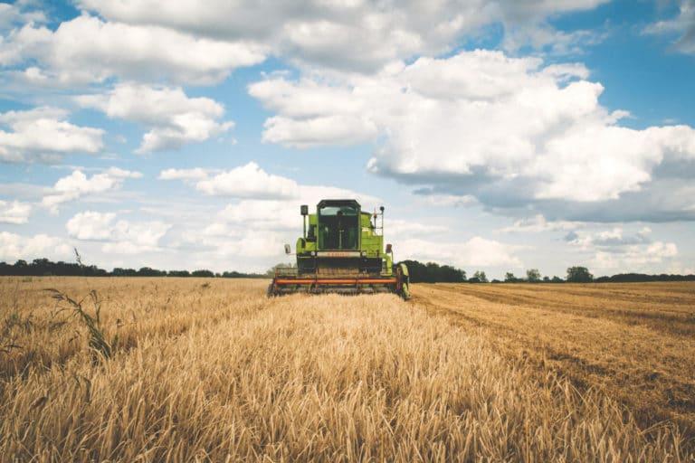 O ISQ Brasil está a crescer no setor agrícola